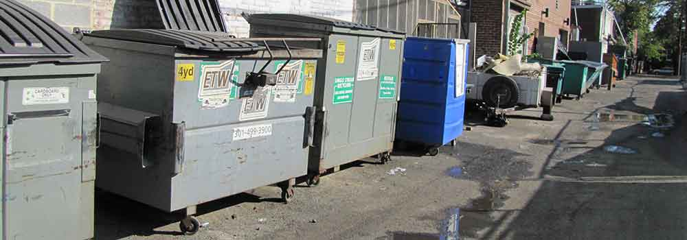 Check-out-the-Mini-Dumpster
